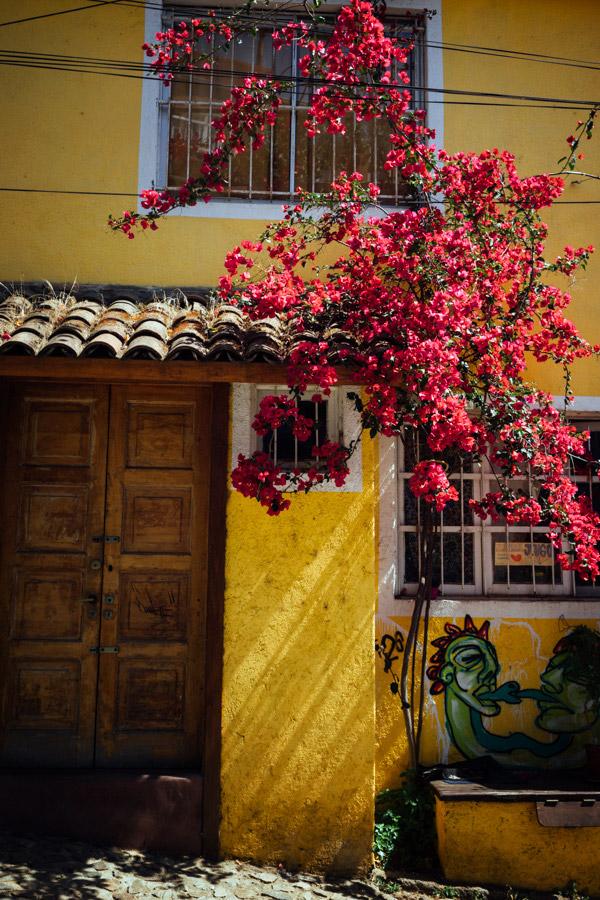 Madelene-Farin-Chile-0073.jpg