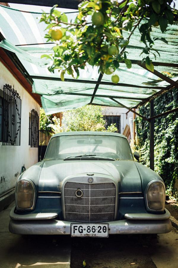 Madelene-Farin-Chile-0104.jpg