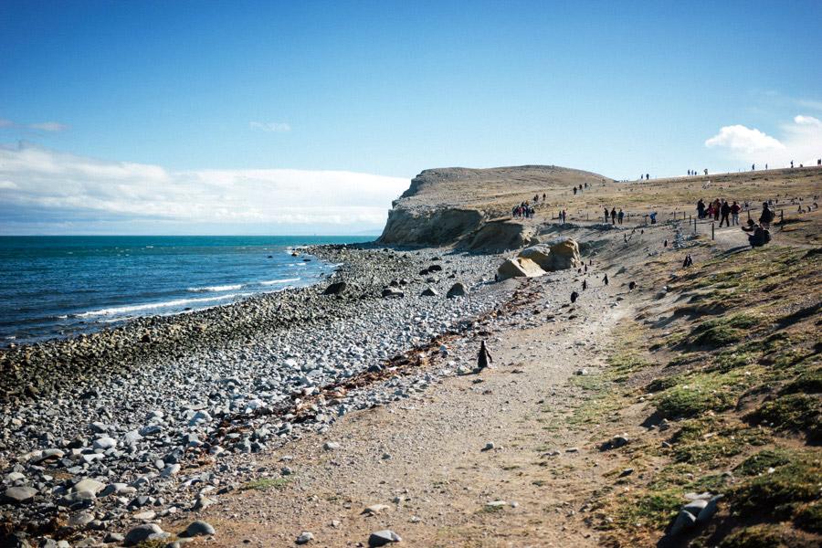 Madelene-Farin-Chile-0776.jpg