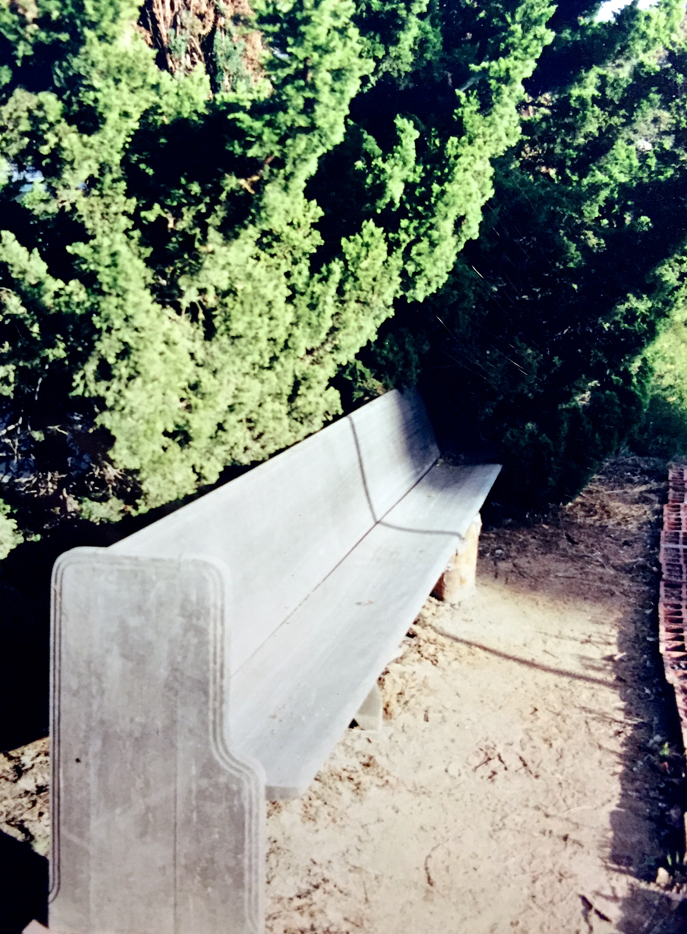 I'll never forget this dear old bench.