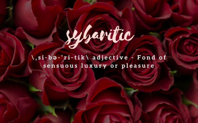 sybaritic-definition-800x500.jpg