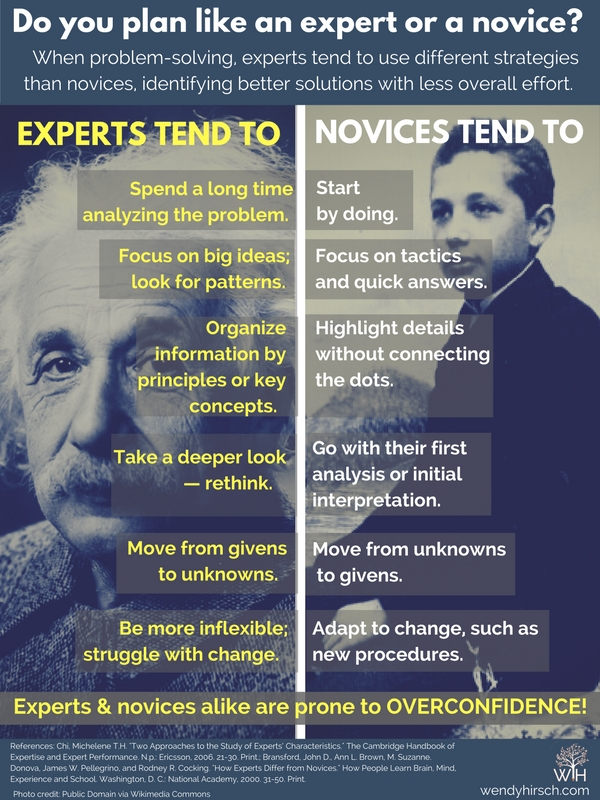 expert-versus-novice.png