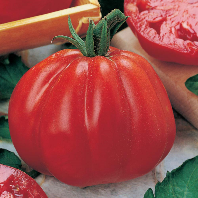 Coeur di Bue Heirloom Tomato (aka 'Ox Heart')