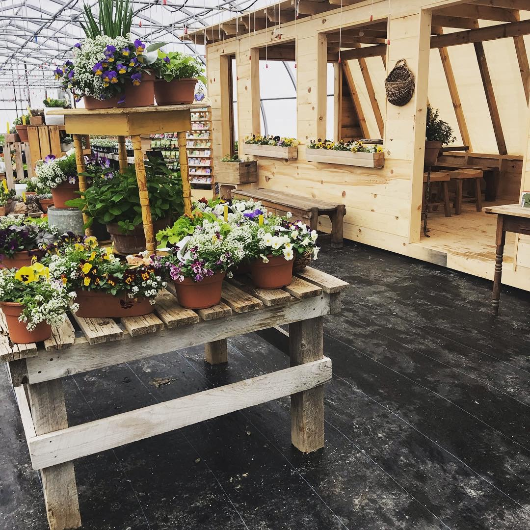 Lush setting - Our event space is nestled within one of our greenhouses, surrounded by vibrant color and glorious scents.