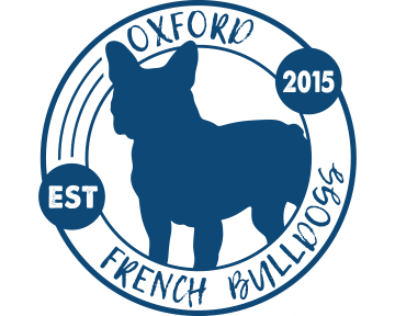 Oxford French Bulldogs - blueclock dark blue 5x4.png