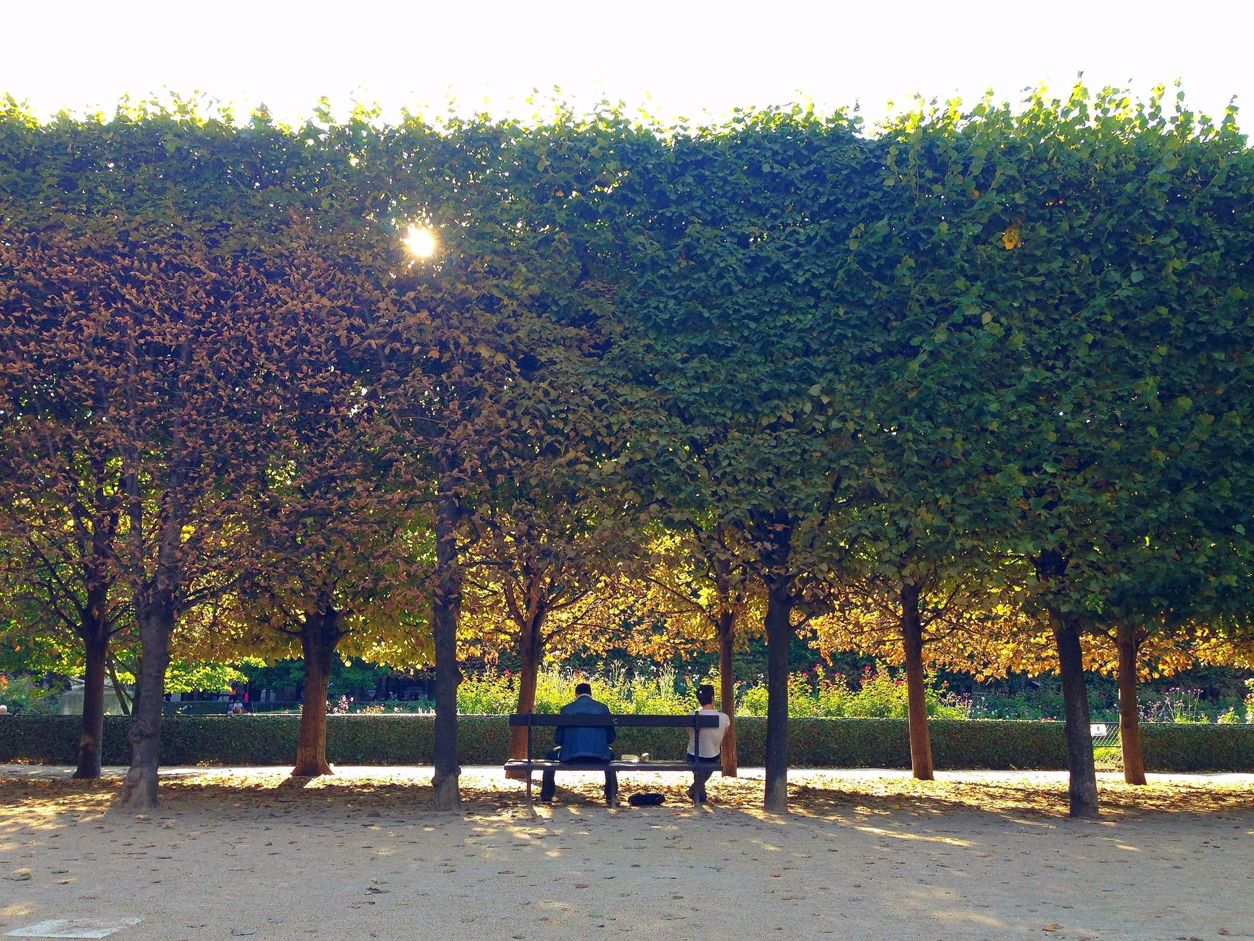 Jardin du Palais-Royal, Paris, 2014