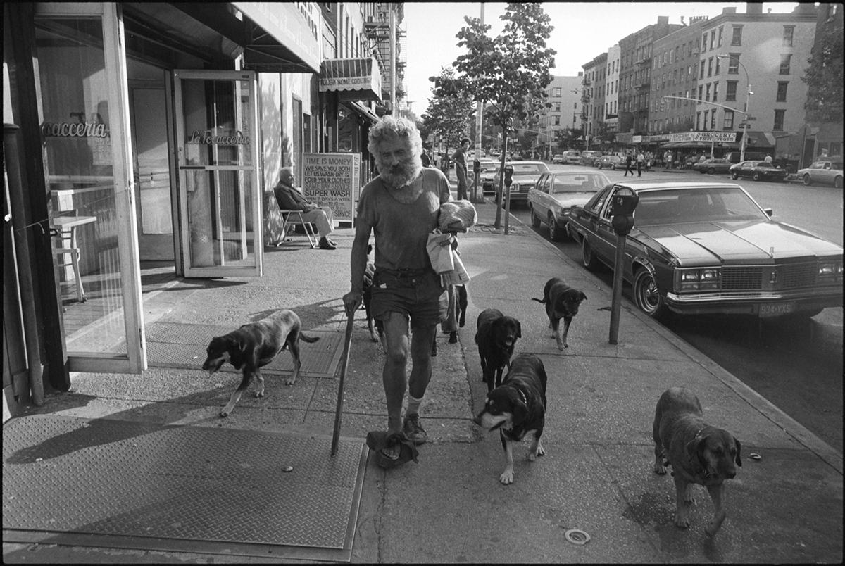 dogman copy.jpg