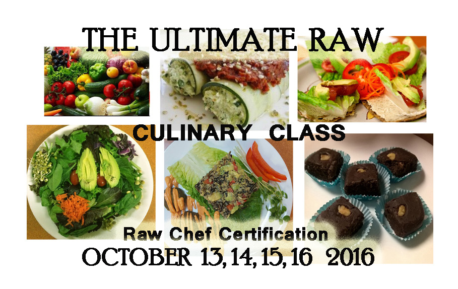 Raw Plant Based Seeds Nuts Culinary Food Classes The