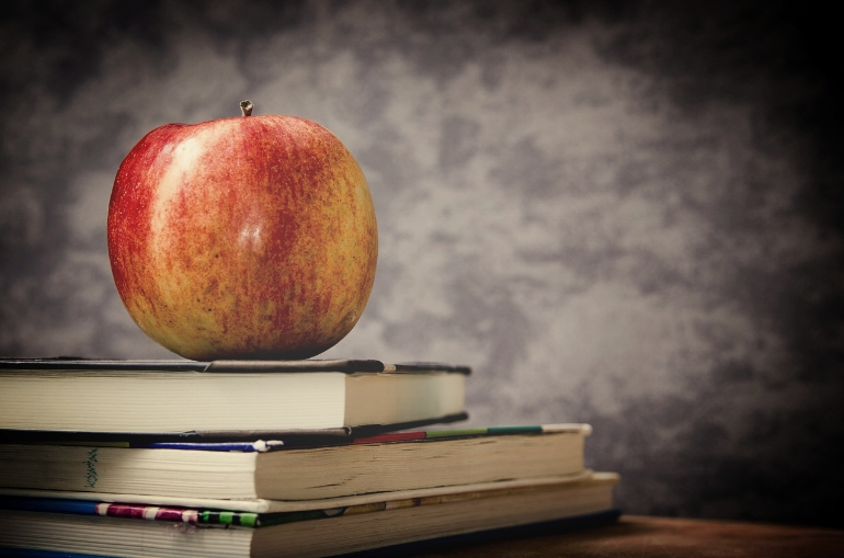 I was expelled from Homeschool (tips for parenting the strong-willed child)