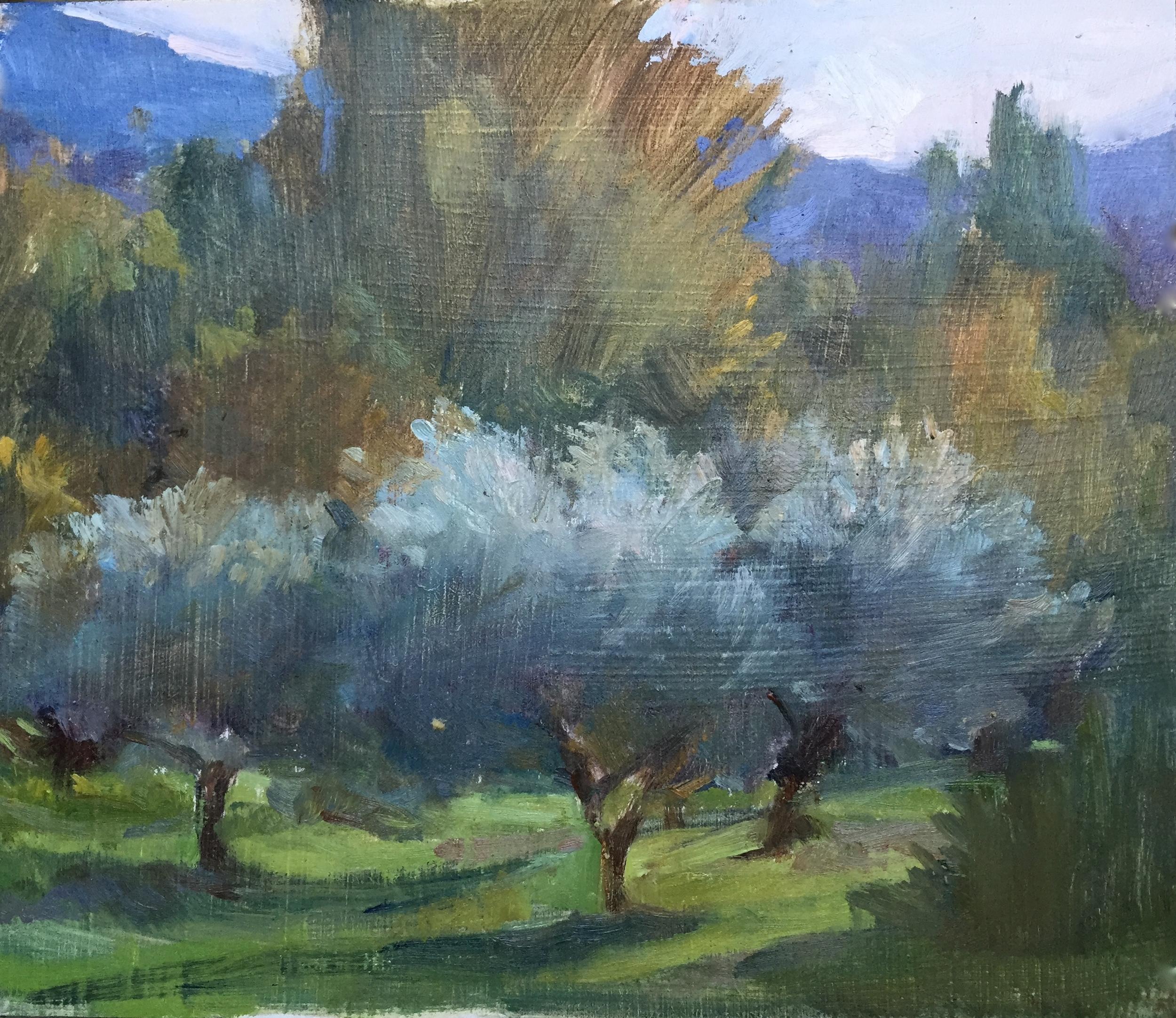 Three Olive Trees