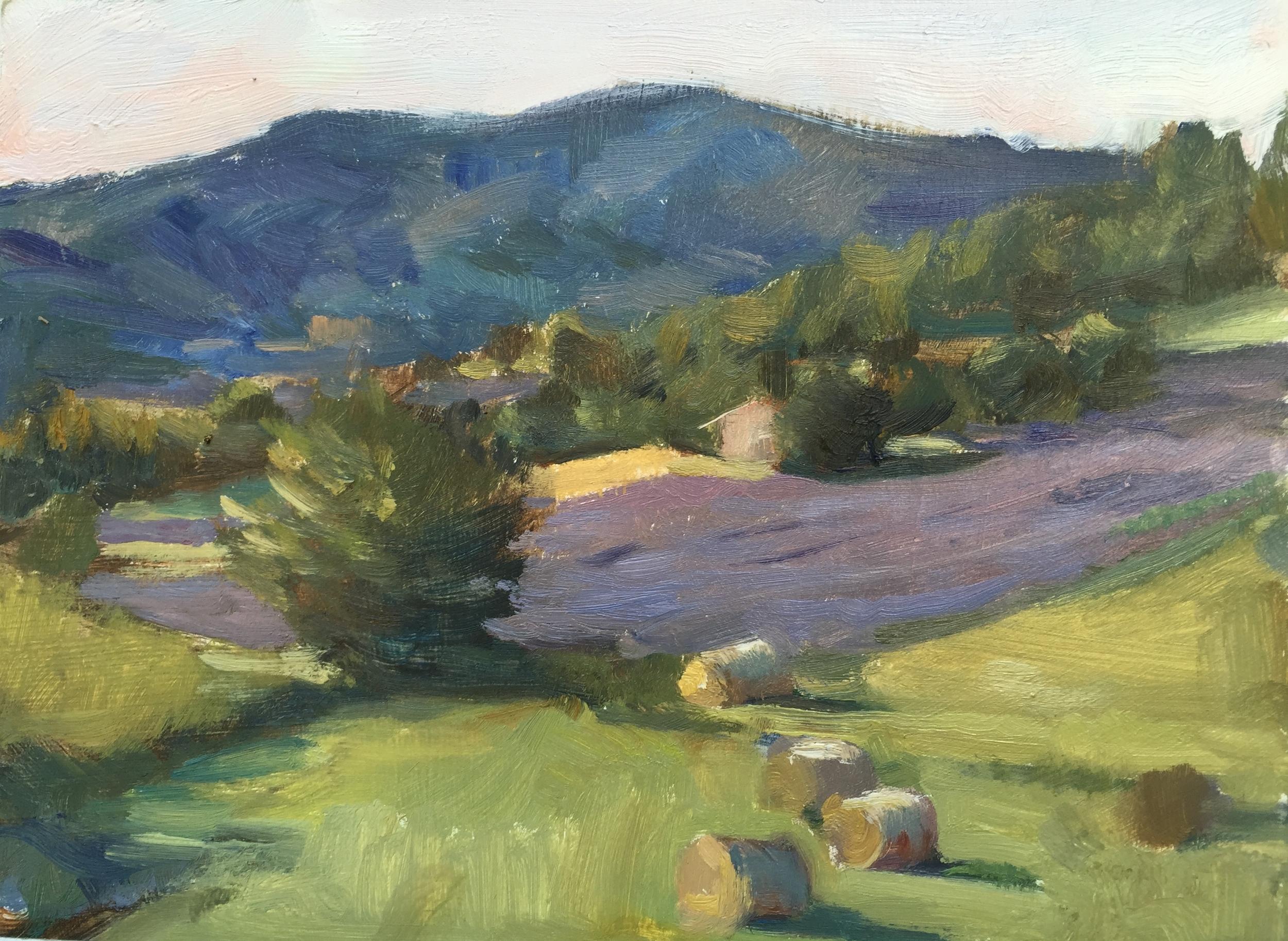 Lavender and Hay Bales, Aurel