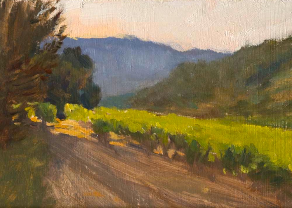 Early-Morning Light in the Vineyard