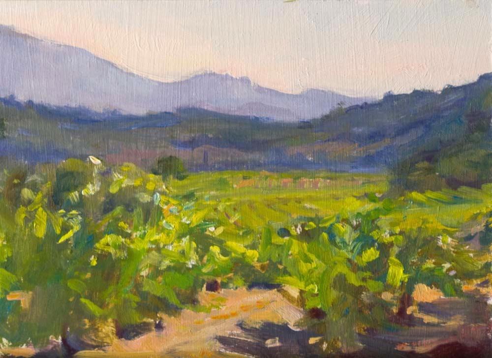 Vineyards in Entrechaux
