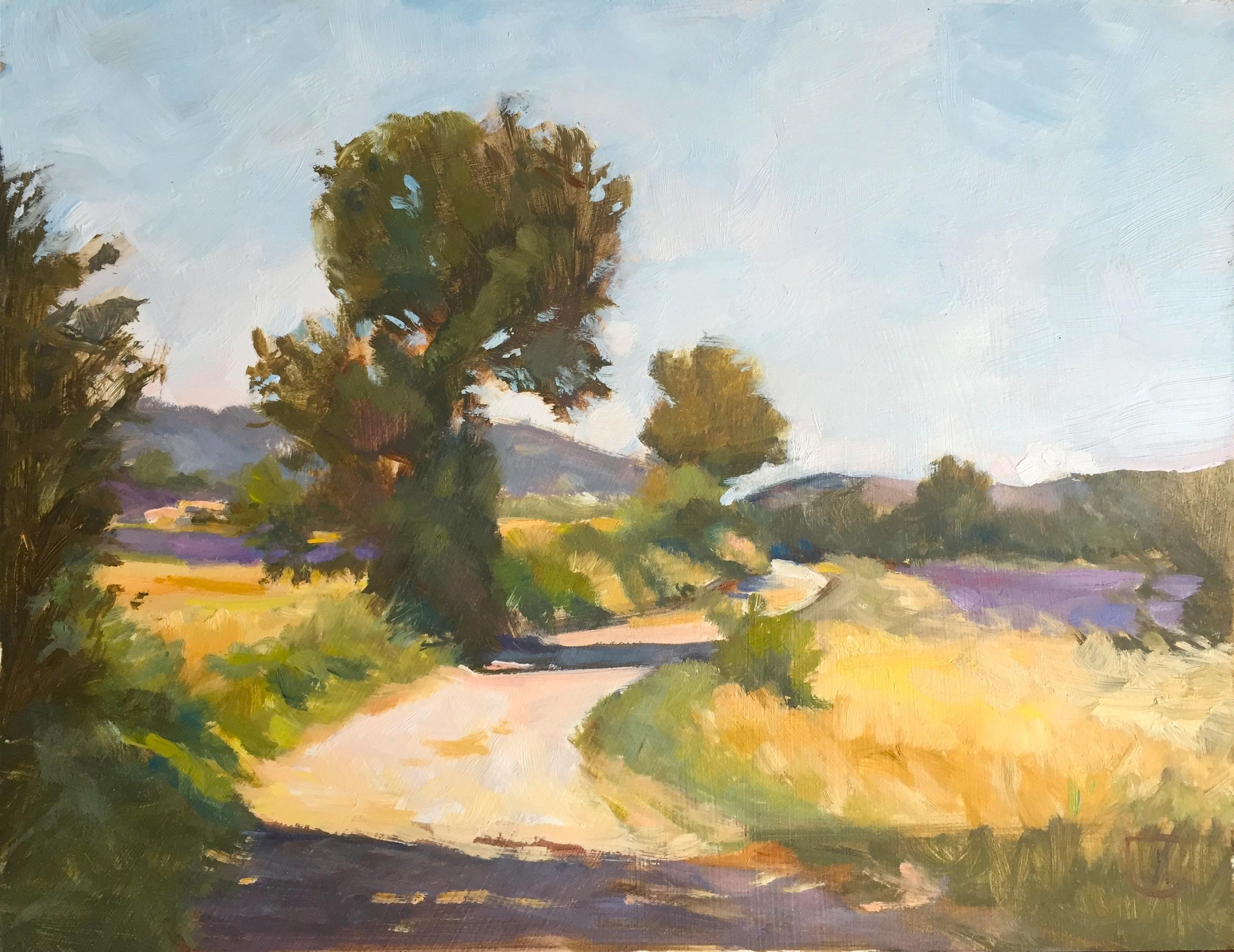 Lavender Fields near Sault, Provence
