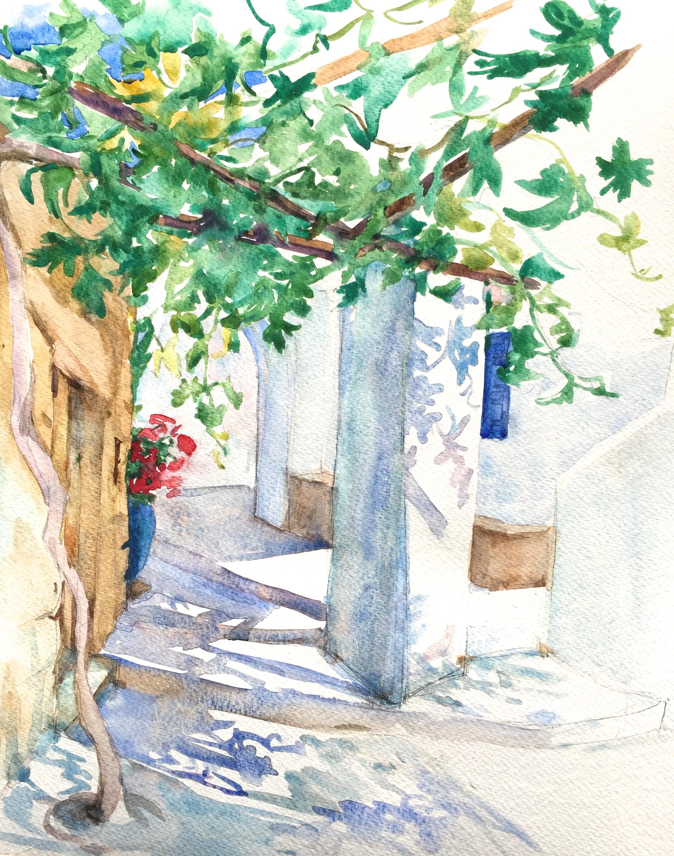 Levrossos vine shadows, Amorgos