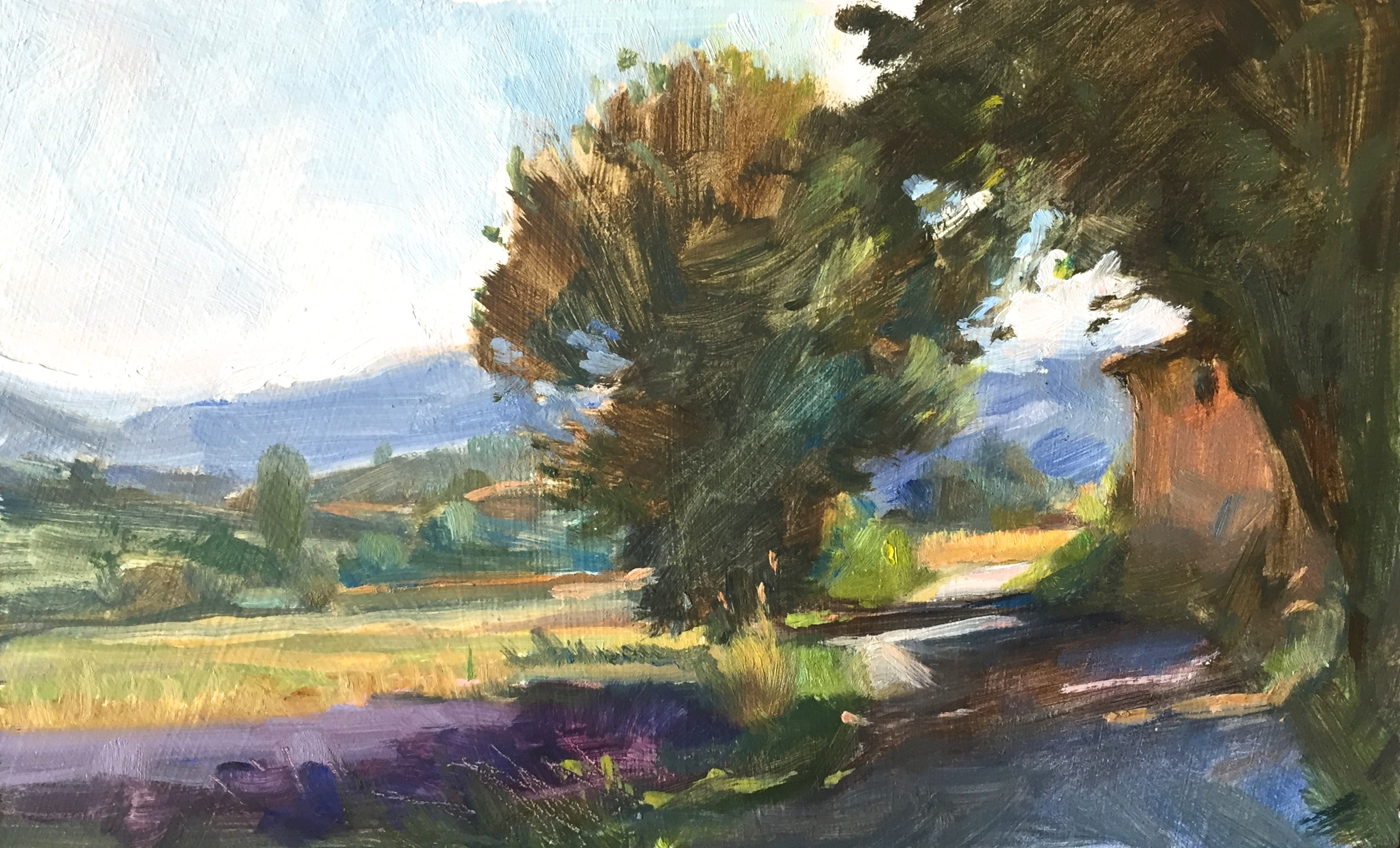 Road through the Valley of Lavender, near Sault
