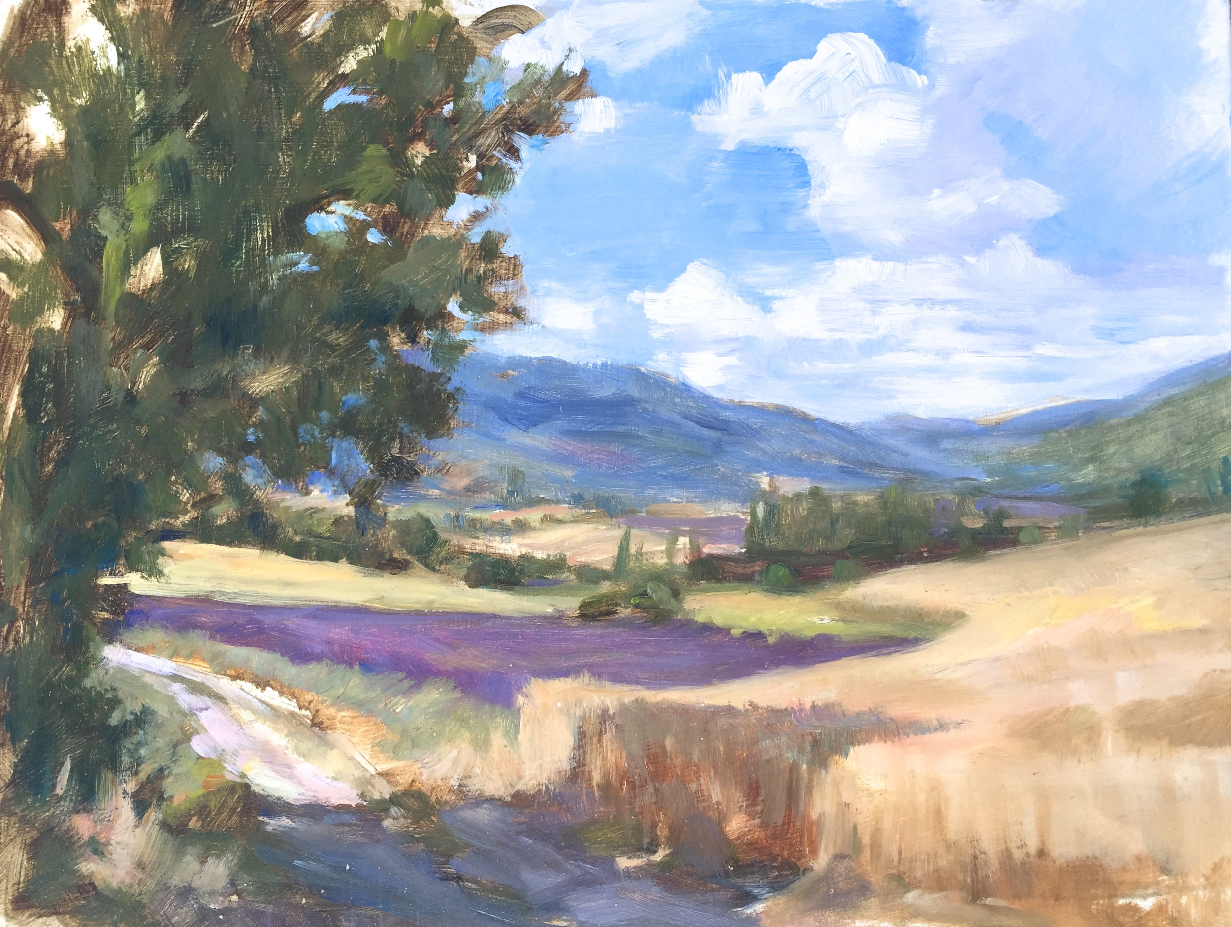 Lavender and Wheat Fields, Summer day in Sault
