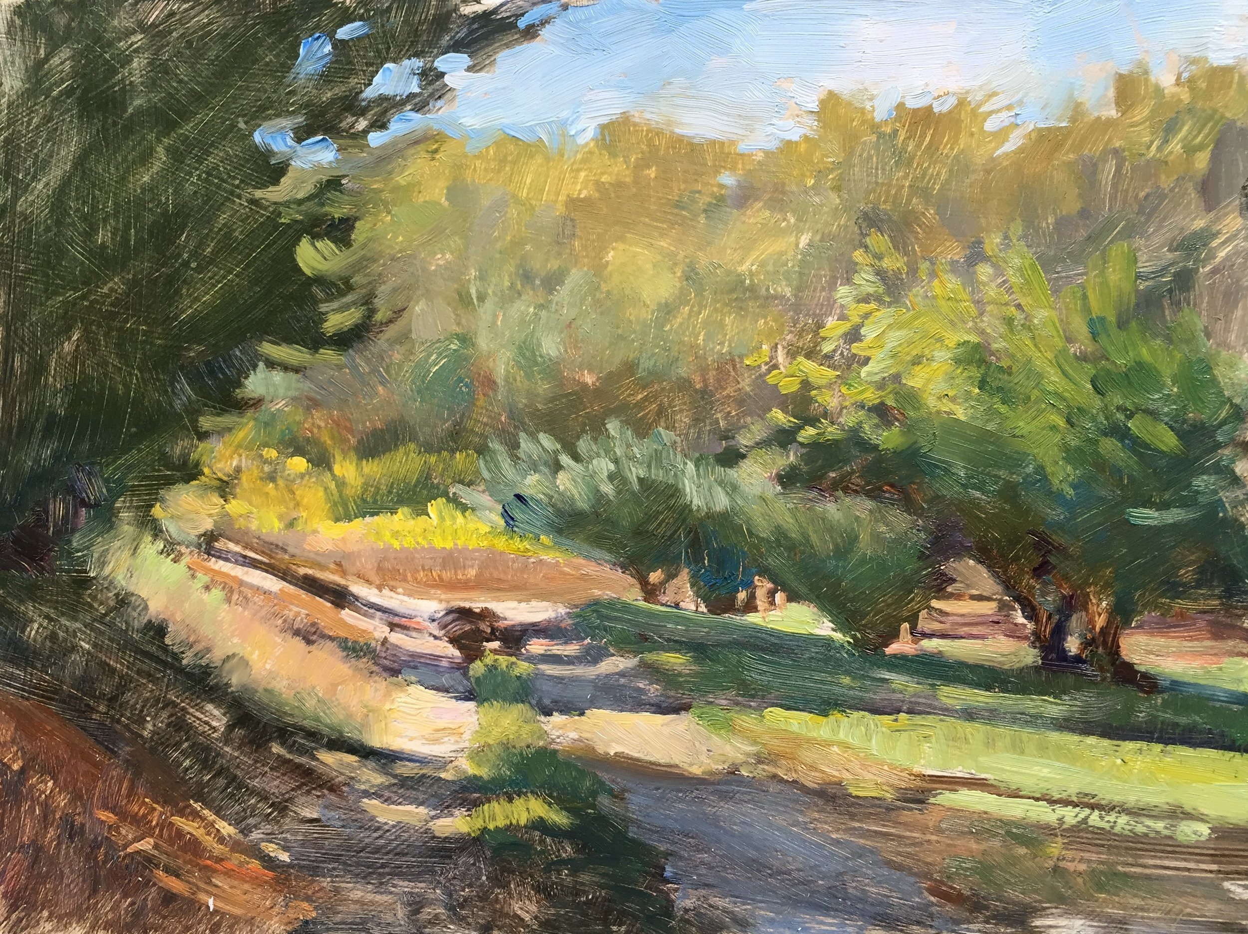 Path through the Cherry Orchard