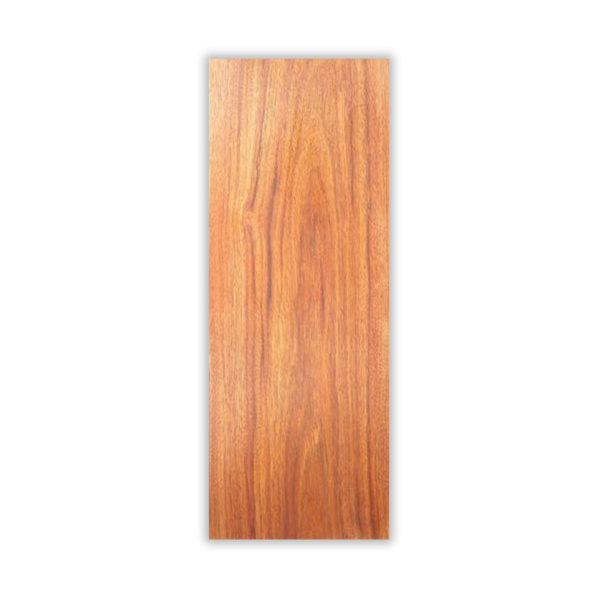 beech wood.png