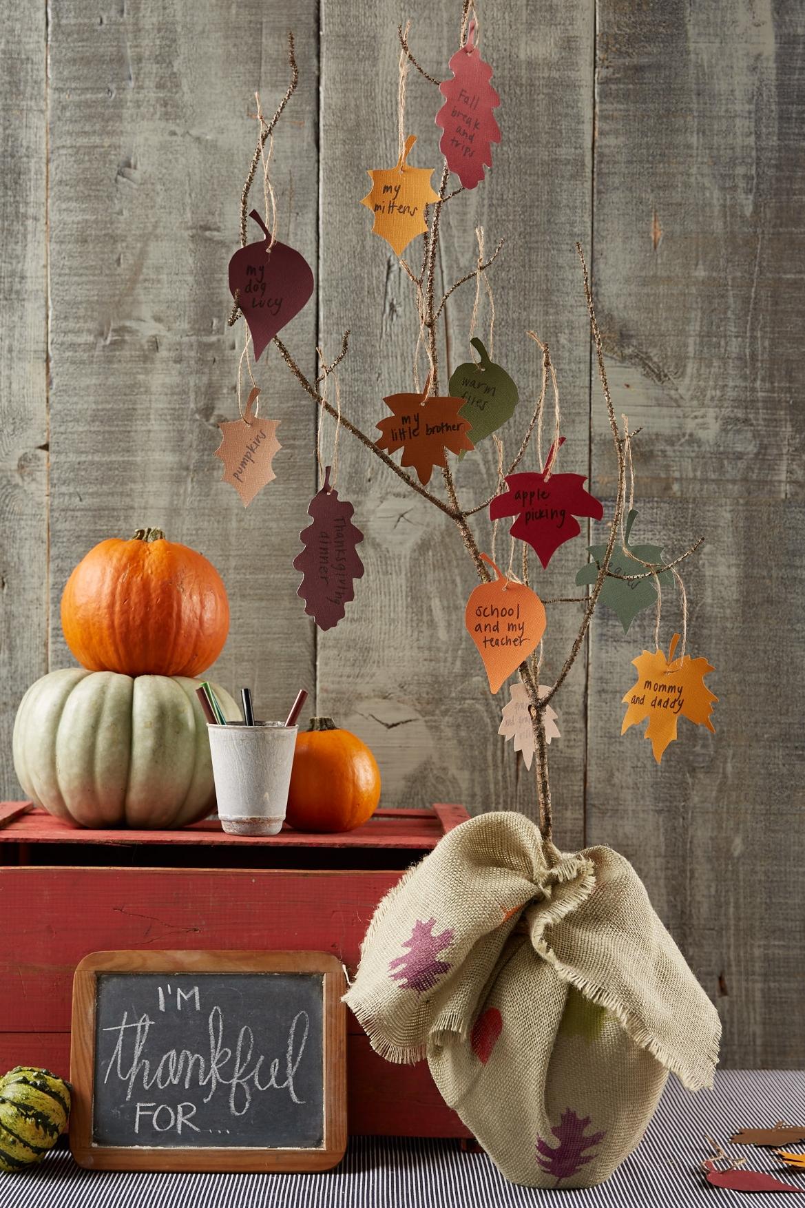 Thankful Tree  for  Oshkosh B'Gosh |  Steve Pomberg