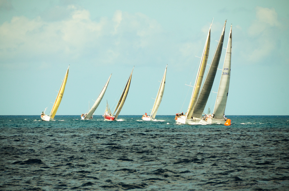 HK-regatta-2013-5.jpg
