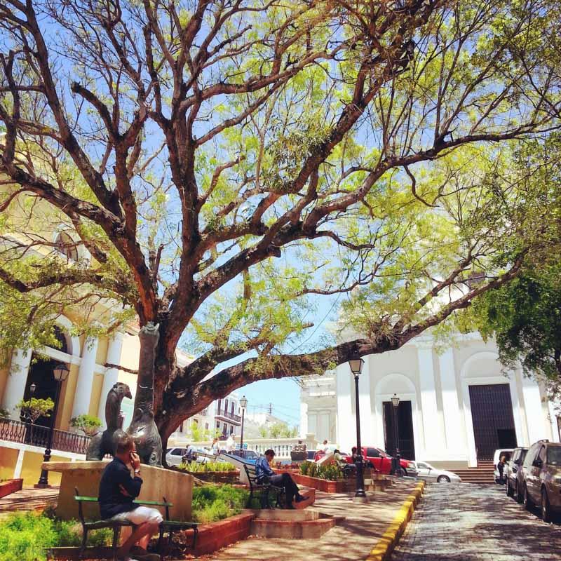 Insta-Puerto-Rico-19.jpg