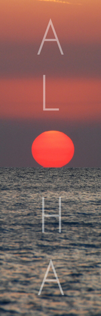 Beach Life - Aloha - Sunset - Likka Photos