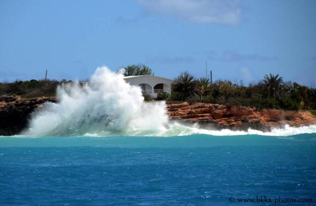 Anguilla-bwi-04.jpg