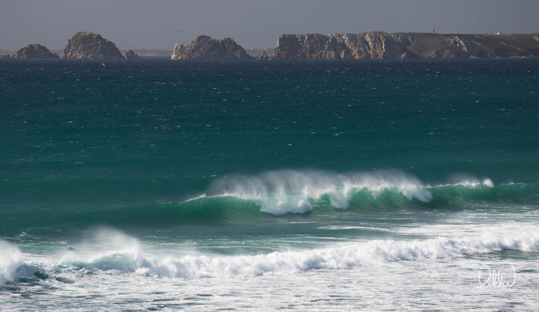 surf-likka-76.jpg
