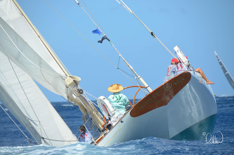 regatta-likka-62.jpg
