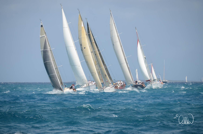 regatta-likka-106.jpg