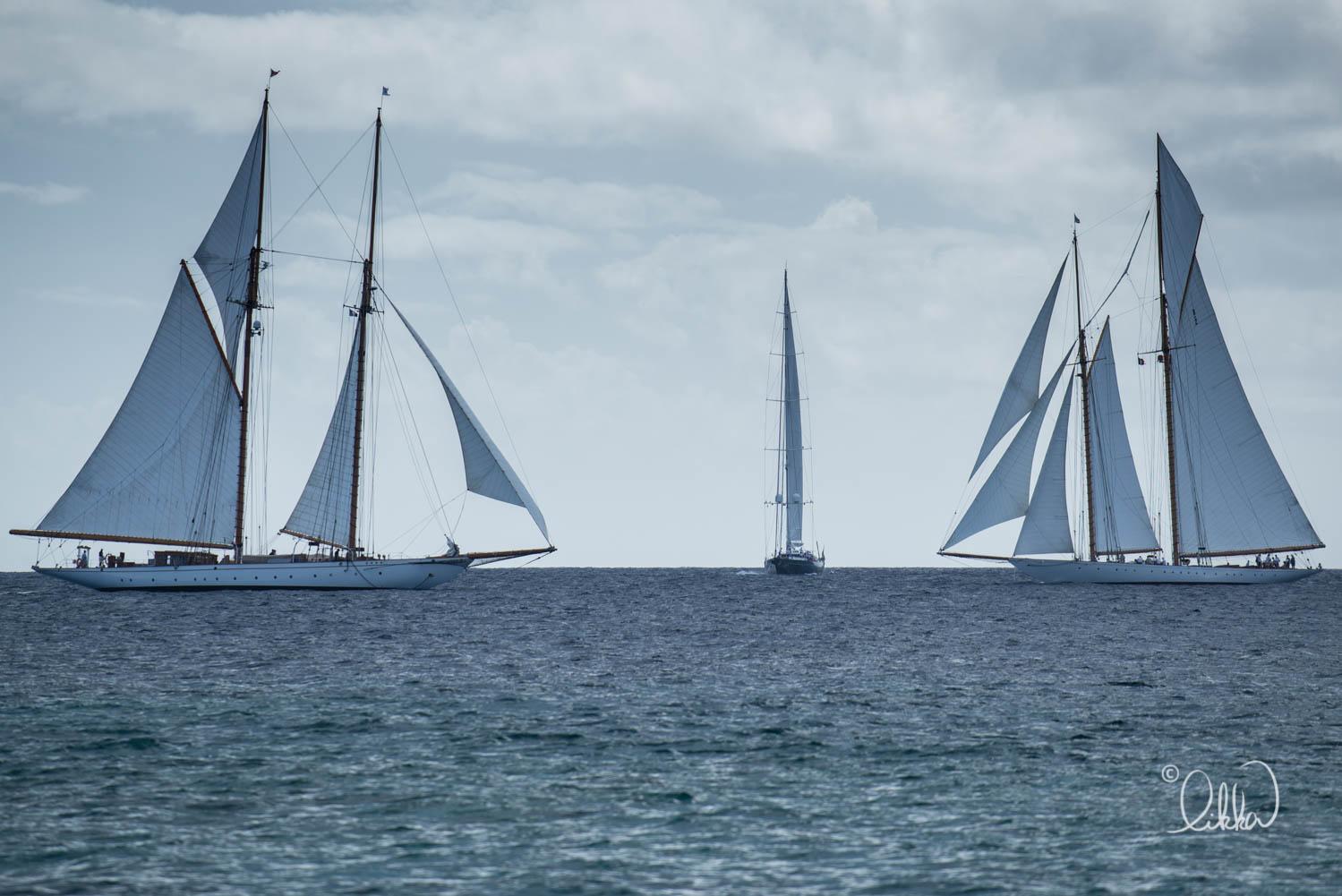 regatta-likka-150.jpg