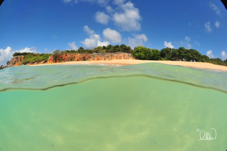 caribbean-likka-28.jpg