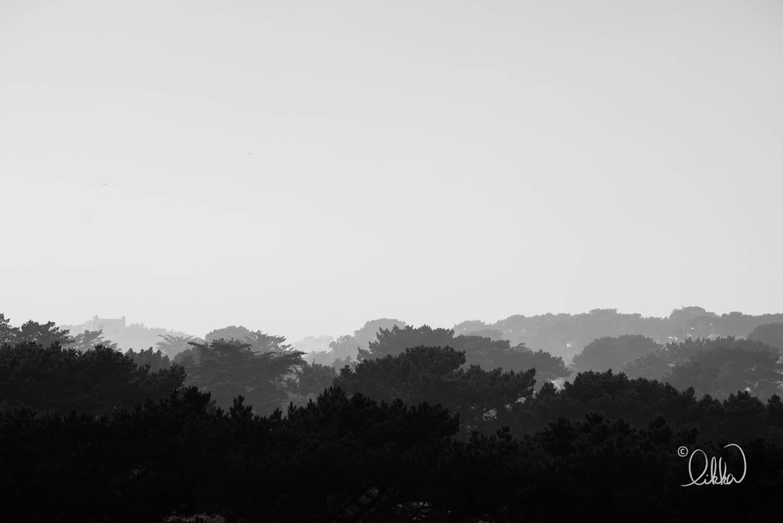 black-and-white-likka-45.jpg