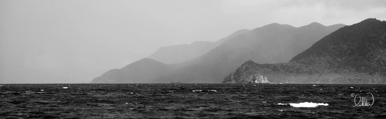 black-and-white-likka.jpg