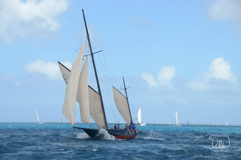 sailing-likka-102.jpg