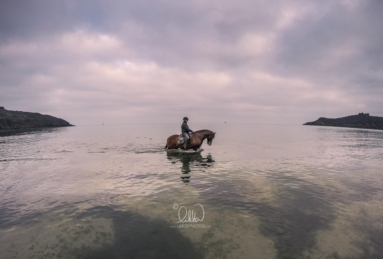 likka-horse-bretagne-5.jpg