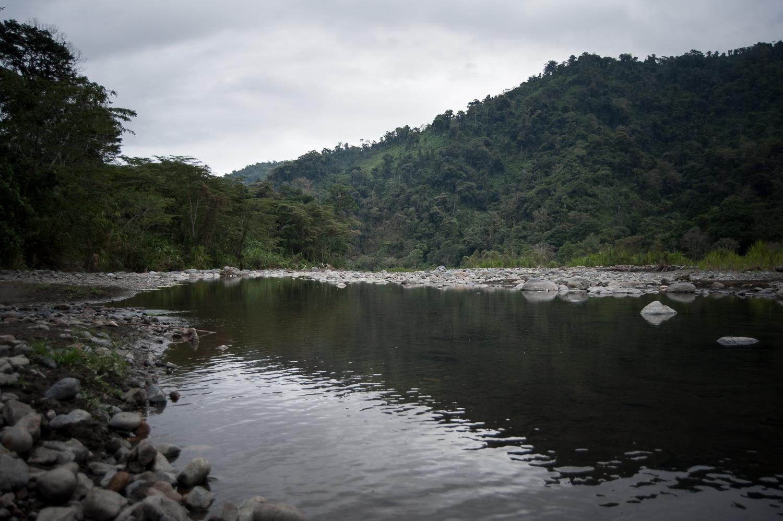 La Tierra es la madre, el indígena es su hijo, las plantas son sus hermanas y los animales sus hermanos, el agua de los ríos es la sangre de los antepasados.