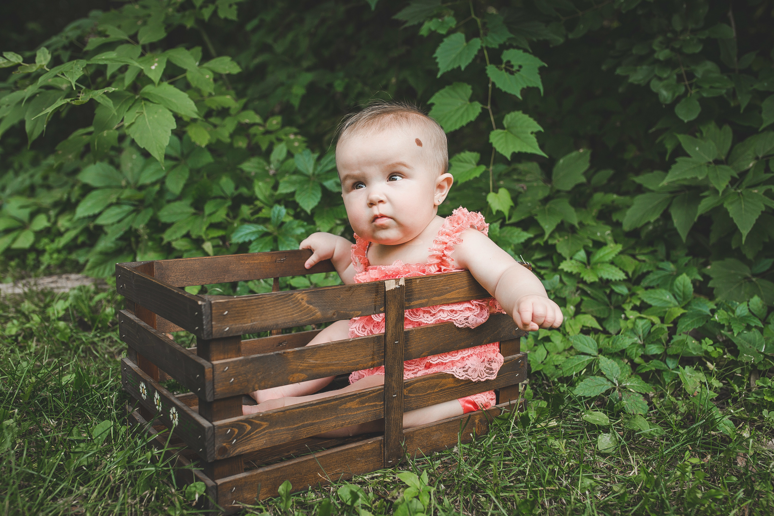Crate Baby By The Woods Outdoor