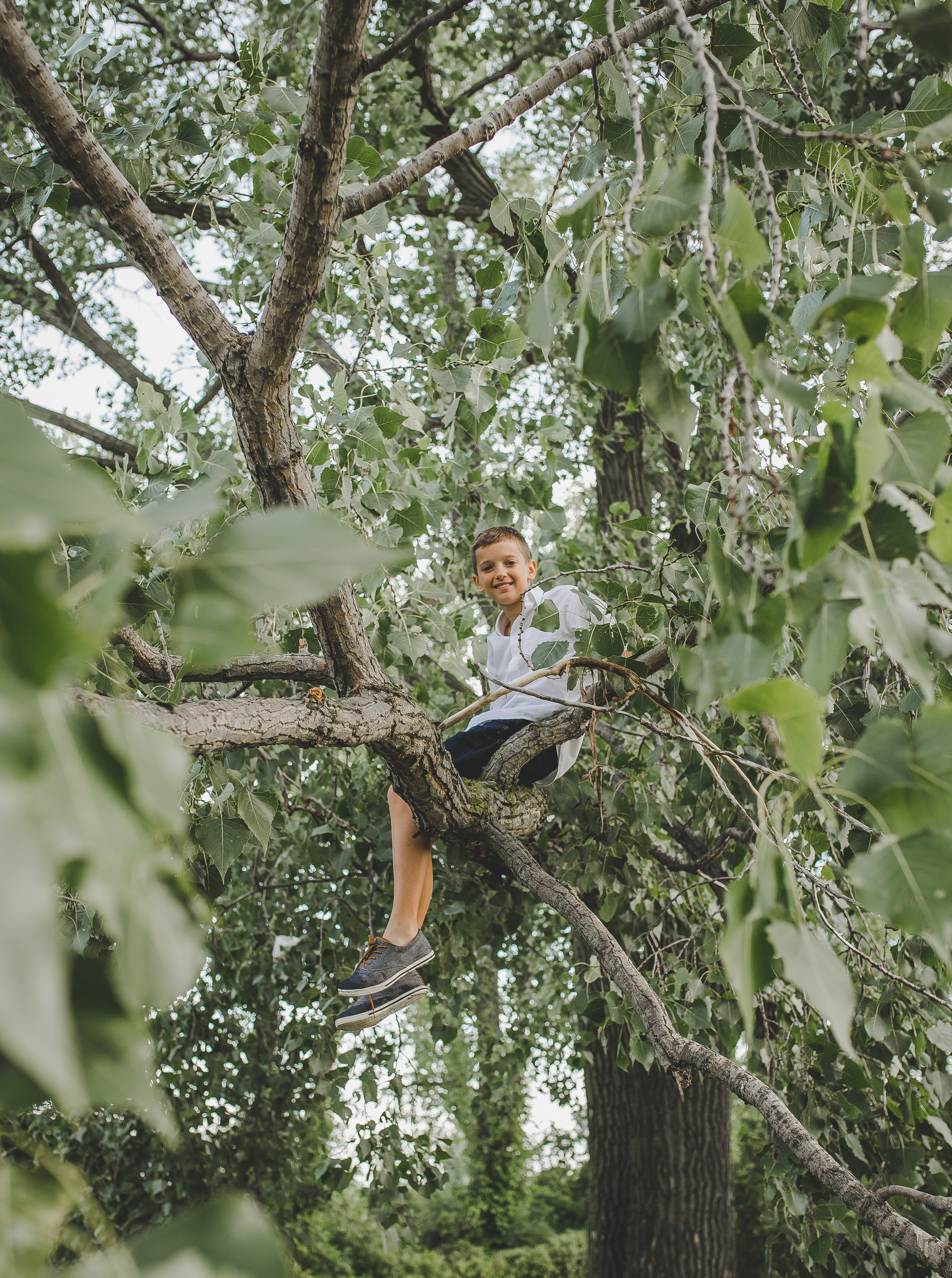 Having boys is NOT for the faint of heart! Noah decided that he wanted to get a bit adventurous and climbed up this tree! Makes for a cool shot if I may say so myself! Let's hope Mama didn't have a heart attack!