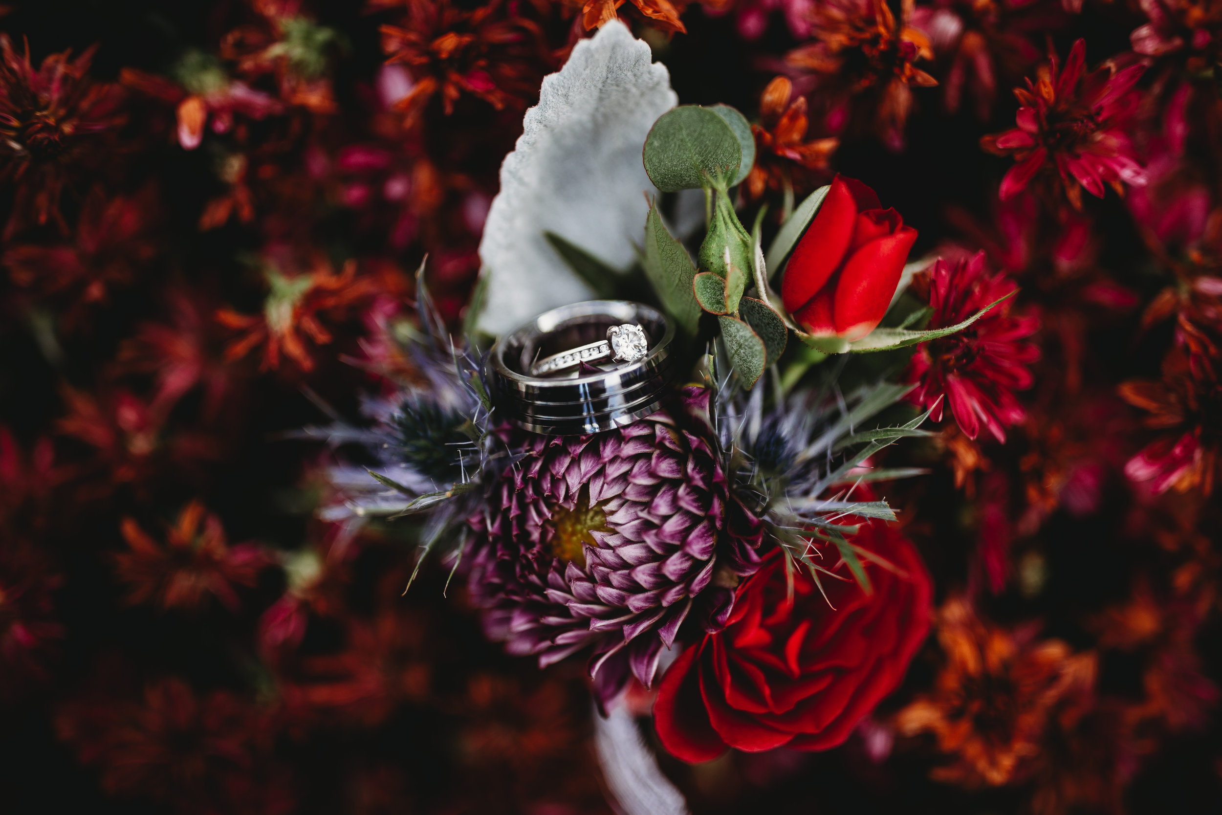 Why you should hire Catchfly Photography_03