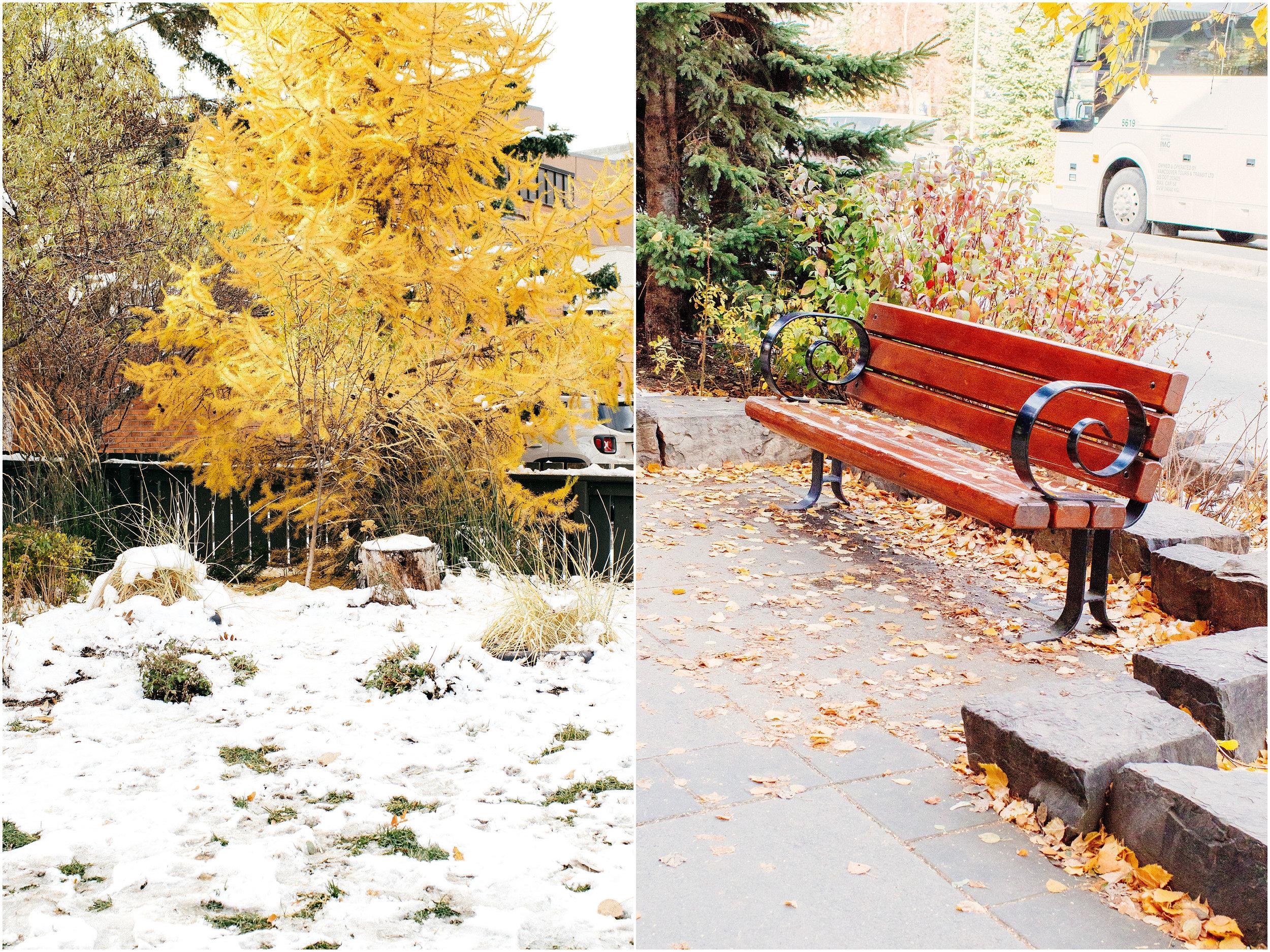 Banff_Travel_Photographer-32.jpg