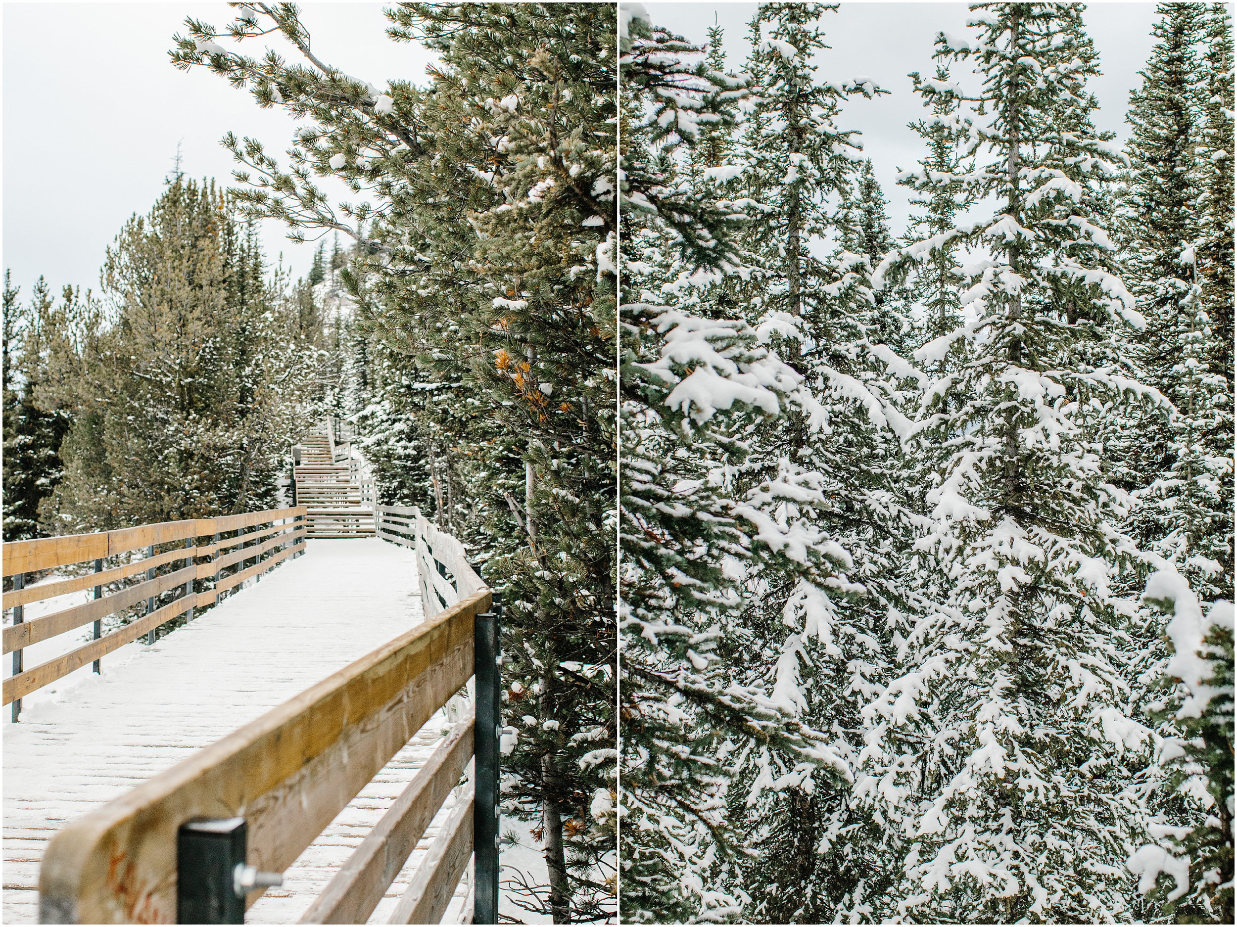 Banff_Travel_Photographer-41.jpg