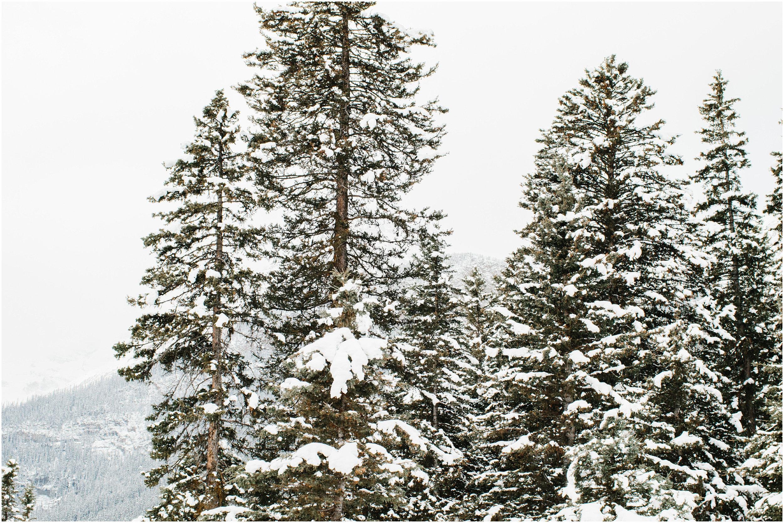 Banff_Travel_Photographer-44.jpg