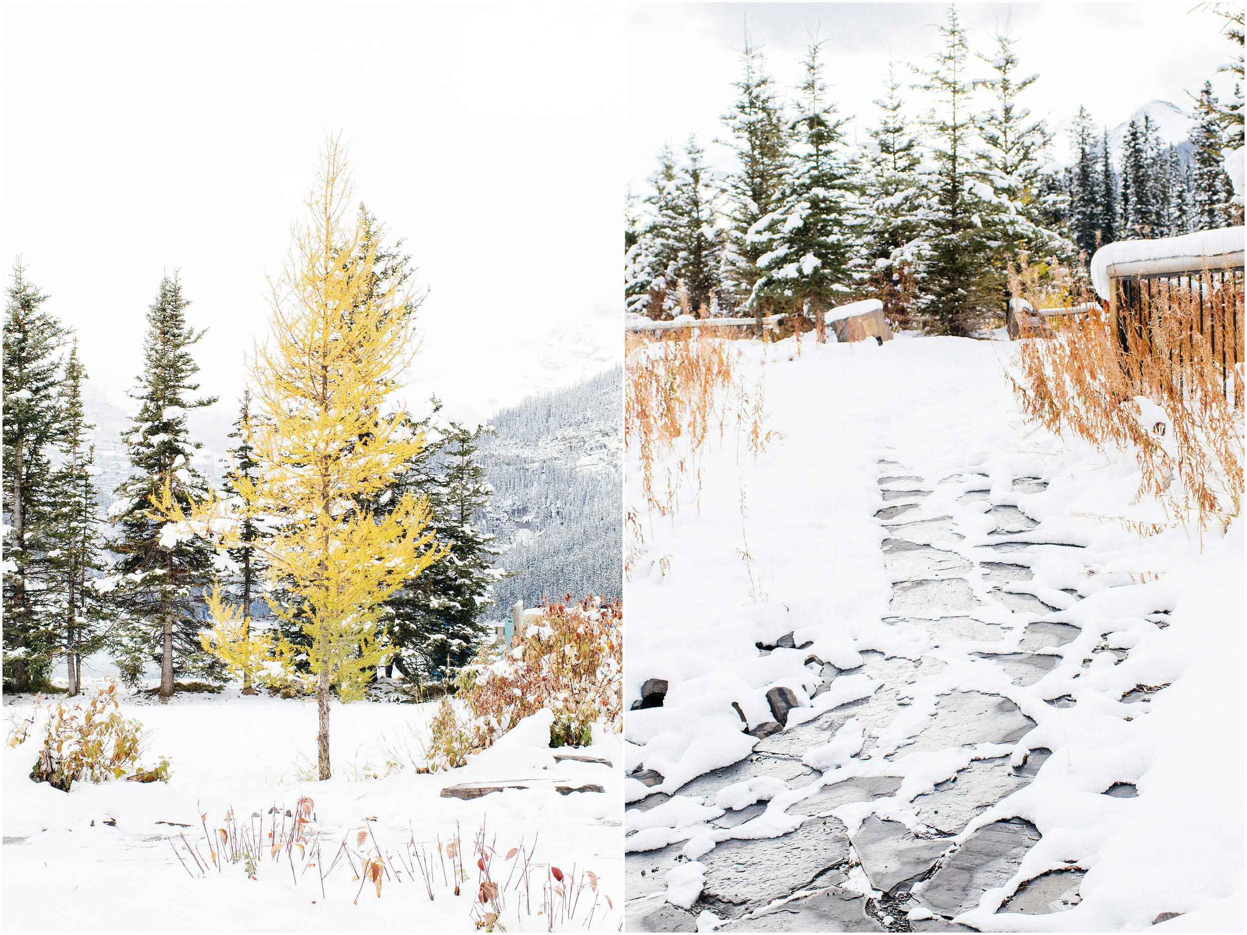 Banff_Travel_Photographer-62.jpg