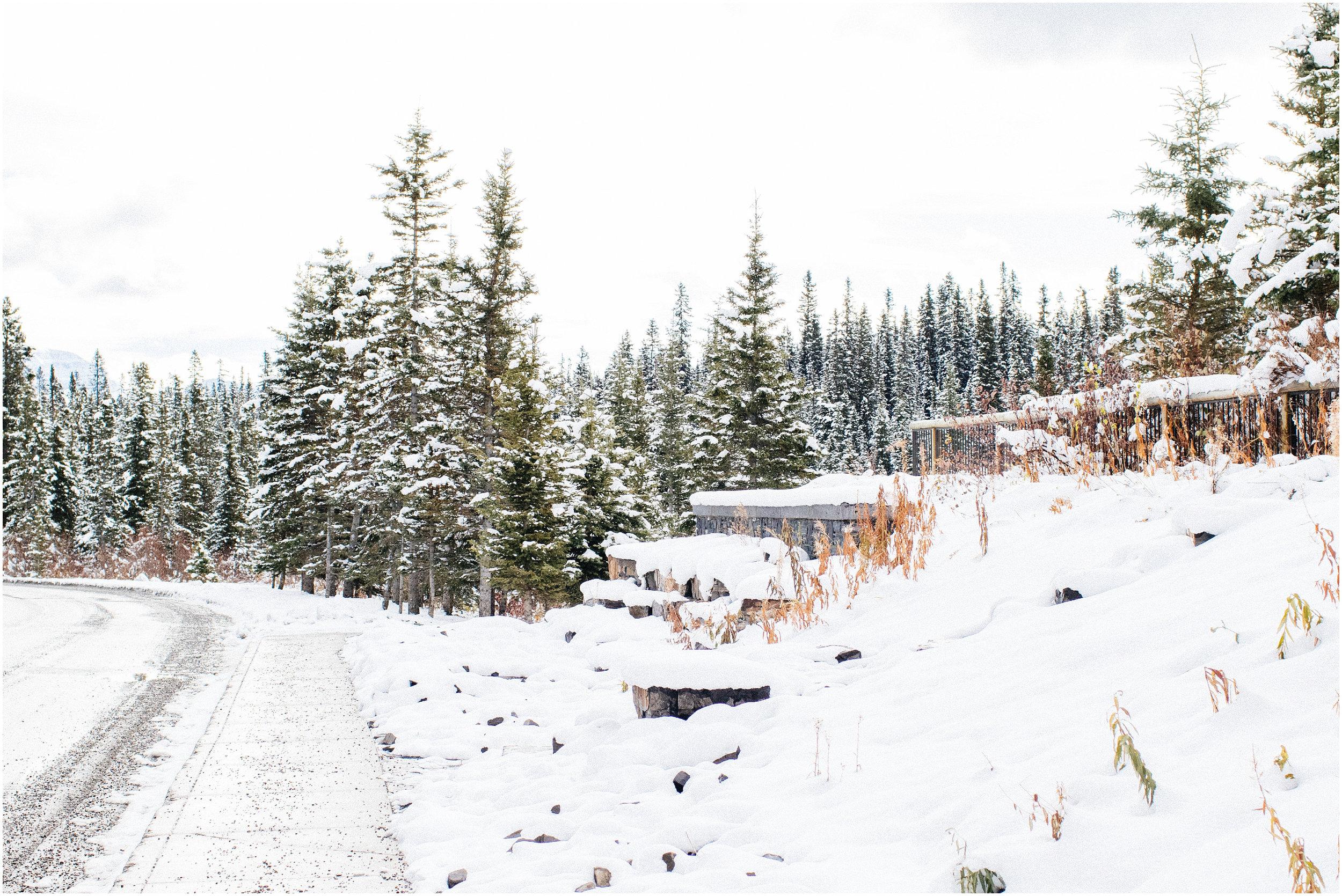 Banff_Travel_Photographer-64.jpg