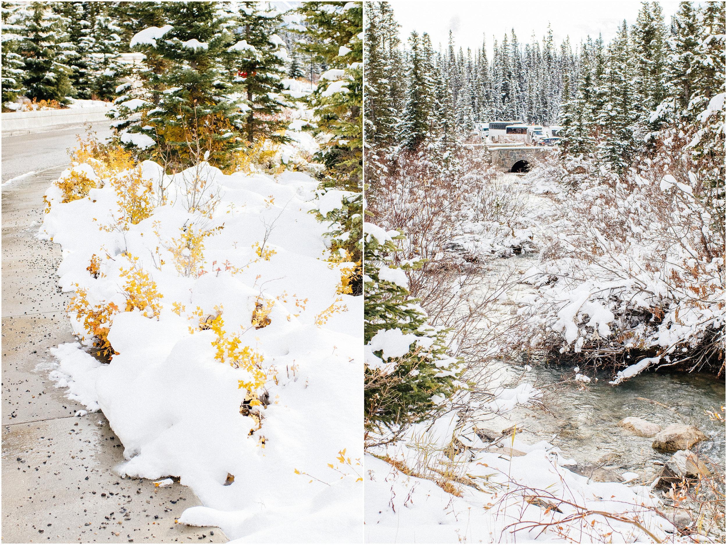 Banff_Travel_Photographer-63.jpg