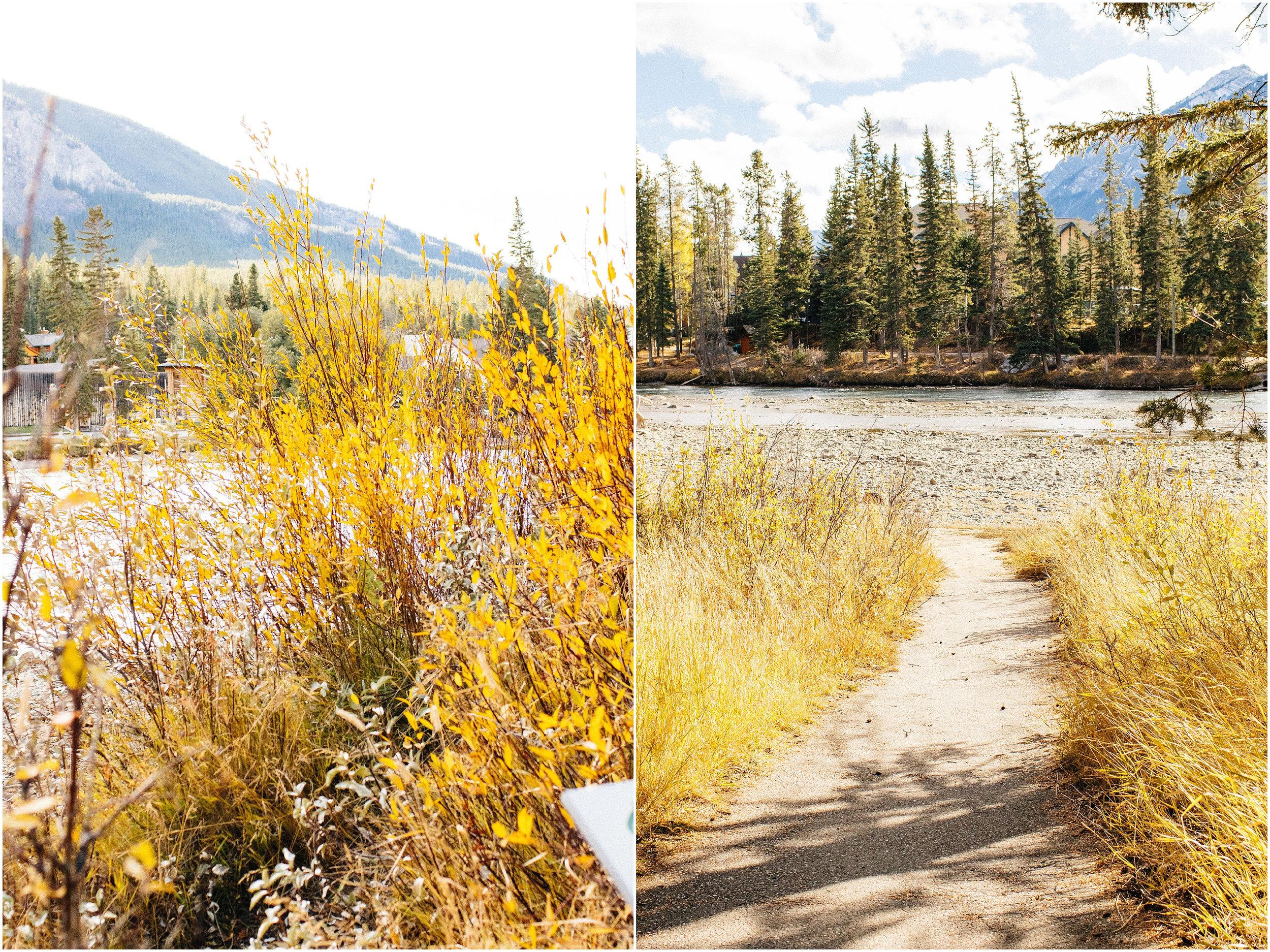 Banff_Travel_Photographer-88.jpg