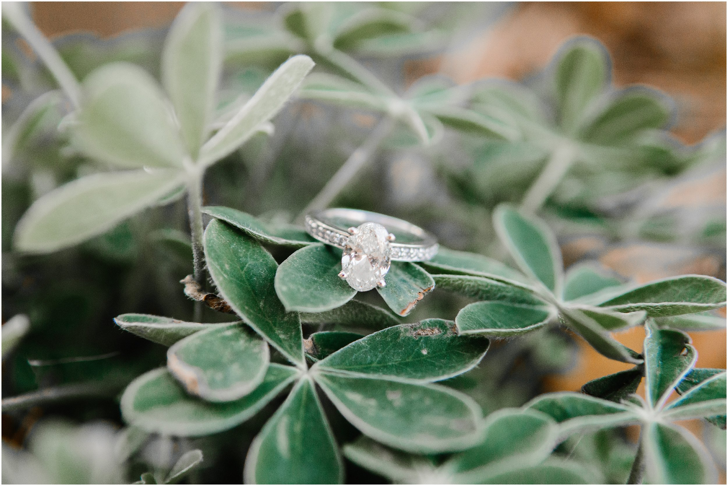 gulf coast wedding photographer_0344.jpg