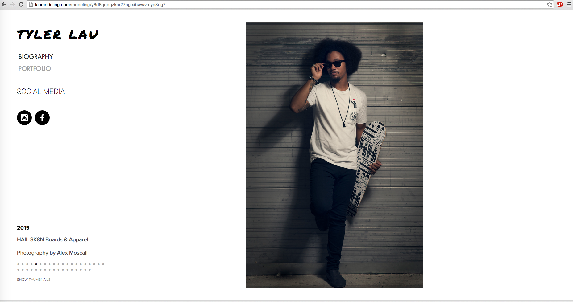 Website Portfolio Gallery